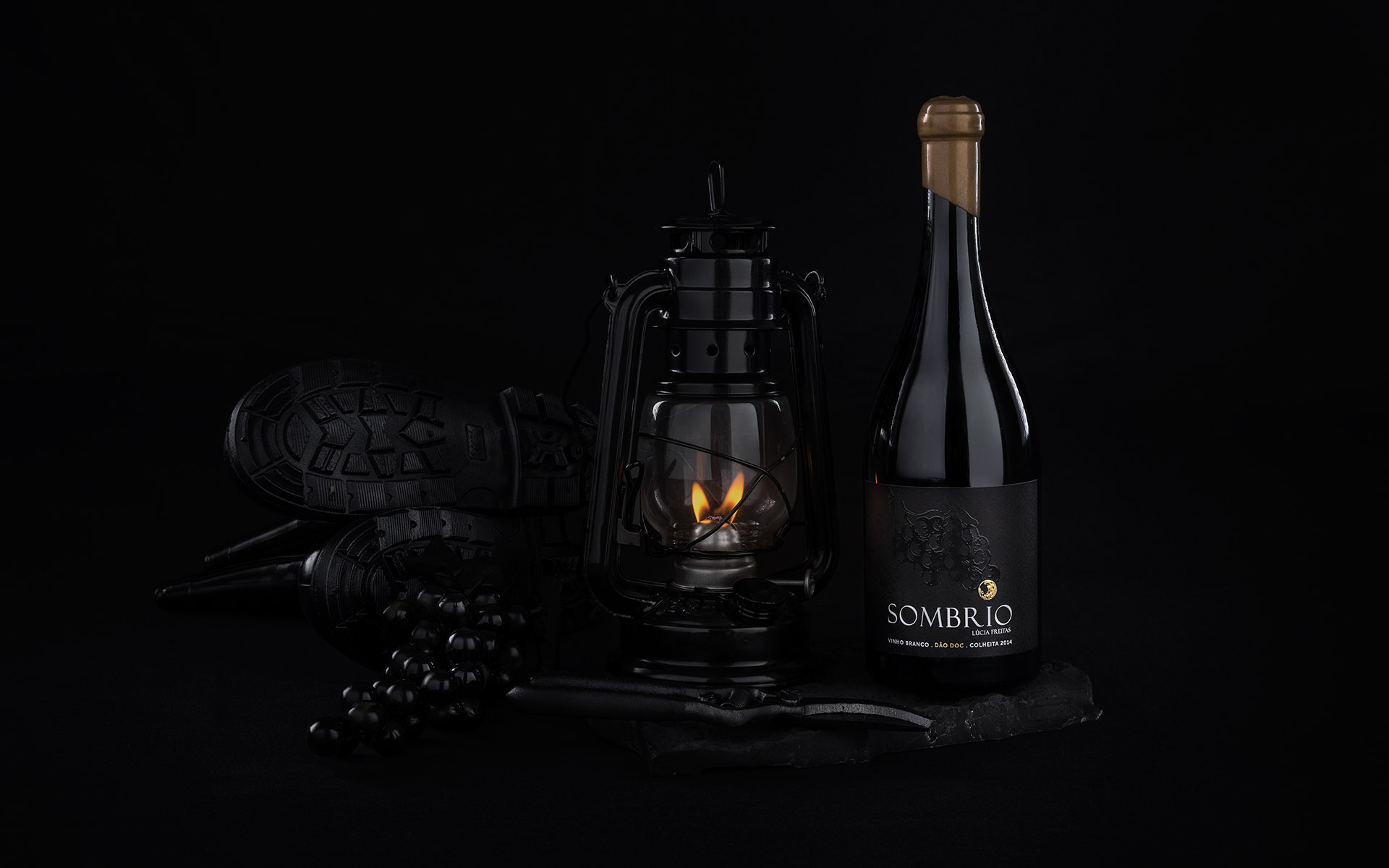 <p>Under the dark scenario of night Sombrio wine is revealed</p>
